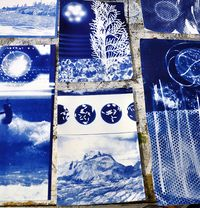 Cyanotype Workshop #8