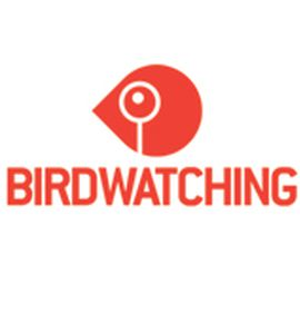 Graphic Birdwatching