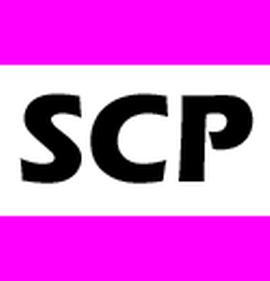 SCP Holding AG, Recording Tonstudio Productions Produktion DJ