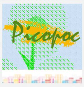 Apparel & graphic design brand Picopoc